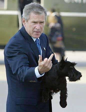 Bee Otch Of The Day 2 22 11 Bee Otch Of The Day George W Bush